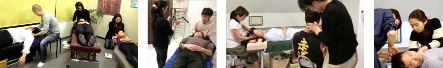 クレニオセラピー★Yoshie研究会で、一緒に楽しく学びませんか?